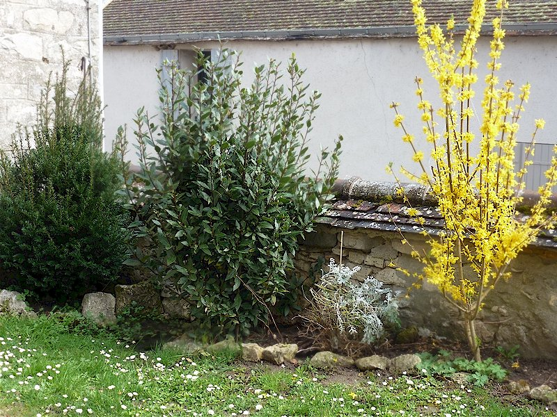77 Écuelles - Maison de Muguett artiste peintre - Muret sur cour