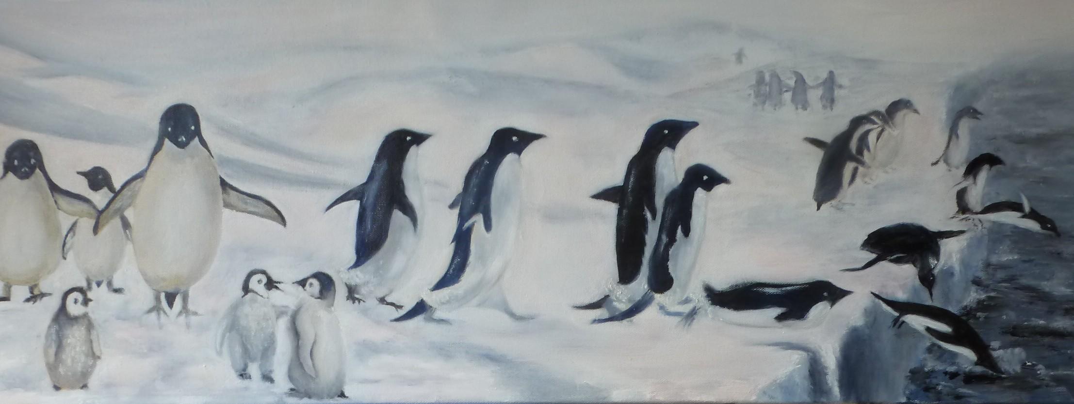 Scène de la vie quotidienne des manchots en Antarctique